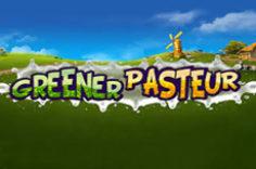 Играть в Greener Pasteur